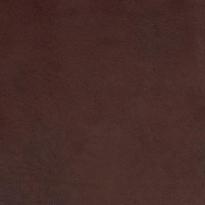 B1720 Nutmeg Fabric: L10