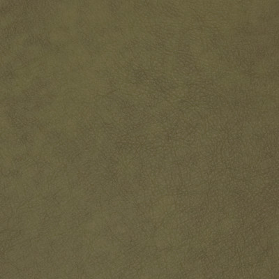 B1733 Verdant Fabric: L10