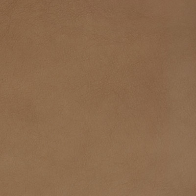 B1748 Malt Fabric: L10, LEATHER, LEATHER HIDE, BROWN