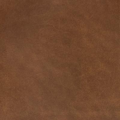 B1752 Simba Fabric: L10