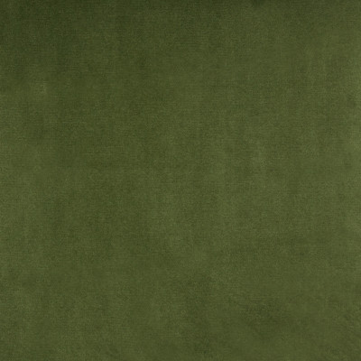 B3880 Meadow Fabric: E52, D30, GREEN SOLID VELVET, FOREST COLORED, WOVEN
