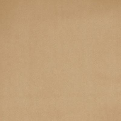 B3884 Sesame Fabric: D30, NEUTRAL, SOLID VELVET, BEIGE SOLID VELVET, KHAKI, BEIGE VELVET, TAUPE VELVET,WOVEN
