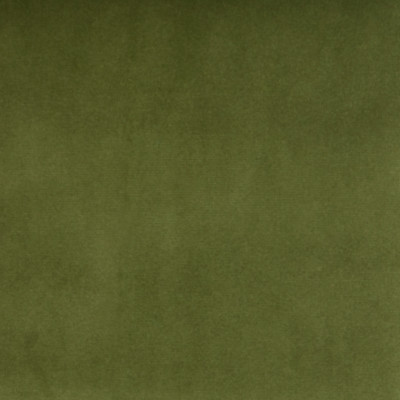 B3906 Kiwi Fabric: E52, D30, GREEN SOLID VELVET, FOREST COLORED, WOVEN
