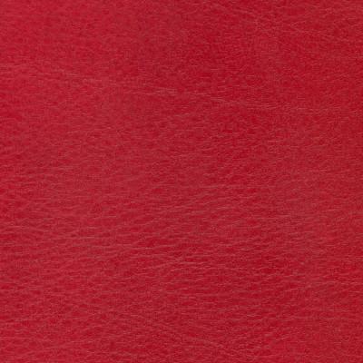 B4255 Allegro Garnet Fabric: D38, ANTIFUNGAL, VINYL, MARINE VINYL, CONTRACT VINYL, RED VINYL, TWO TONE VINYL, RED AND BLACK VINYL, CONTRACT VINYL , ANTI-MICROBIAL,ANTI-STATIC, MARINE INTERIOR, EXTERIOR, COMMERCIAL, RESIDENTIAL