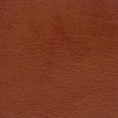 B4256 Allegro Old Whiskey Fabric: D38, ANTIFUNGAL, VINYL, MARINE VINYL, CONTRACT VINYL, BROWN VINYL, TWO TONE VINYL, BROWN AND BLACK VINYL, CONTRACT VINYL , ANTI-MICROBIAL, ANTI-STATIC, COMMERCIAL, RESIDENTIAL, MARINE INTERIOR, EXTERIOR