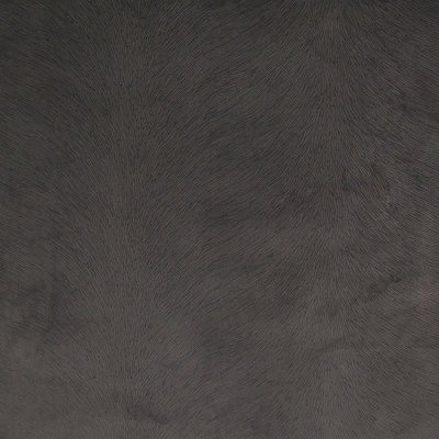 B4296 Coal Fabric: E31, D39, SOLID, TEXTURE, SOLID TEXTURE, ANIMAL PRINT, ANIMAL SKIN, DARK GREY, DARK GRAY, GREY, GRAY, CHARCOAL, SLATE,WOVEN, SKINS, SKIN