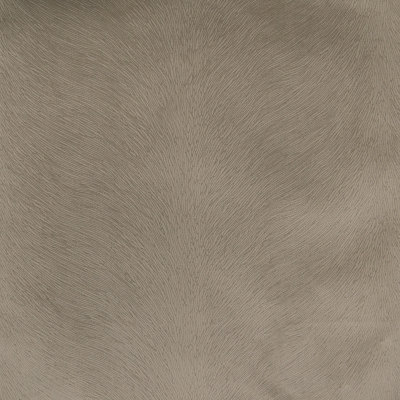 B4300 Driftwood Fabric: D39, SOLID ANIMAL, SKIN, ANIMAL TEXTURE, ANIMAL STRIPES, TAUPE, TAUPE ANIMAL, TAUPE ANIMAL SKIN,WOVEN, SKINS, SKIN