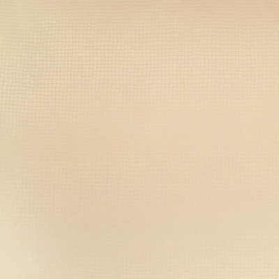 B4500 Champagne Fabric: D42, BEIGE WOVEN, WOVEN GEOMETRIC, NATURAL