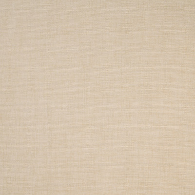 B4665 Driftwood Fabric: D44, SOLID BEIGE CHENILLE, PLAIN  CHENILLE, PLAIN, SOLID TAUPE, TAUPE CHENILLE, LINEN,WOVEN
