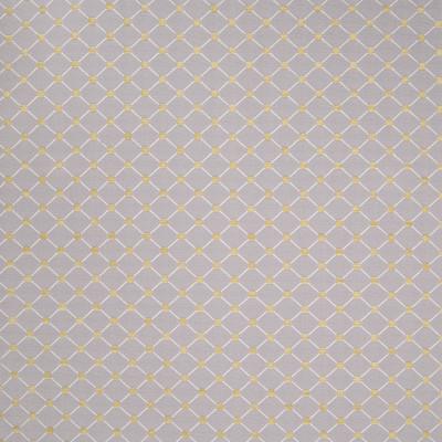 B4904 Rococo Greenhouse Fabrics