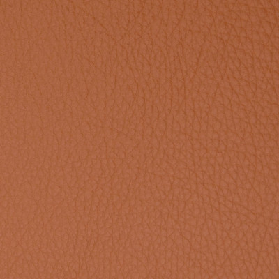 B5096 Brandy Fabric: L12, L11, ORANGE LEATHER, BURNT ORANGE LEATHER, BROWN LEATHER HIDE, BRANDY COLORED HIDE, LEATHER HIDE, SEMI ANILINE LEATHER, SEMI ANILINE HIDE