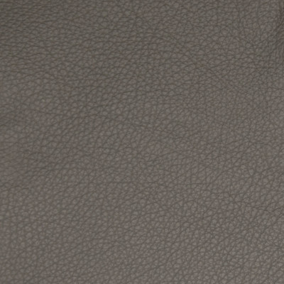 B5113 Pewter Fabric: L11, TEXTURED CHARCOAL HIDE, TEXTURED CHARCOAL LEATHER