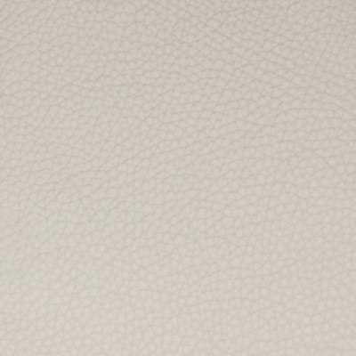 B5118 Parchment Fabric: L11, TEXTURED LIGHT GRAY HIDE, TEXTURED SOLID GREY HIDE, GREY LEATHER, GRAY LEATHER
