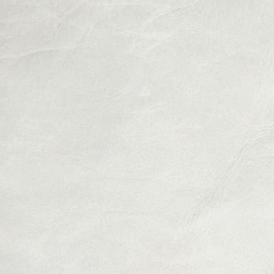 B5121 Serenity Fabric: L11, TEXTURED LIGHT GRAY HIDE, TEXTURED SOLID GREY HIDE, GREY LEATHER, GRAY LEATHER