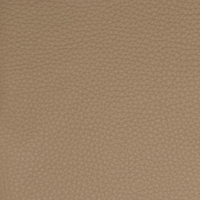 B5125 Mushroom Fabric: L12, L11, TAUPE, LIGHT BROWN, TAUPE LEATHER, LEATHER, GRAINY LEATHER, NEUTRAL LEATHER