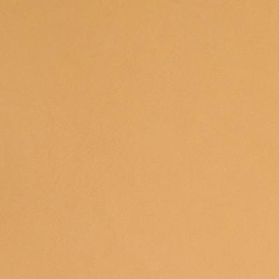 B5156 Desert Fabric: L12, L11, L08, L06, LATTE, LIGHT BROWN, BROWN LEATHER, LIGHT BROWN LEATHER, LEATHER