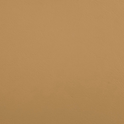 B5189 Zander Dune Fabric: ANTIMICROBIAL, AUTOMOTIVE VINYL, COMMERCIAL, RESIDENTIAL