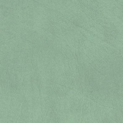 B5197 Allegro Sage Green Fabric: ANTI-MICROBIAL