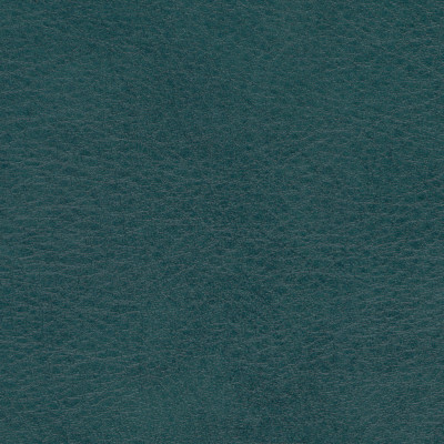 B5198 Allegro Shadow Green Fabric: ANTIFUNGAL, VINYL, MARINE VINYL, CONTRACT VINYL, ANTI-MICROBIAL, ANTI-STATIC, MARINE INTERIOR, EXTERIOR, COMMERCIAL, RESIDENTIAL