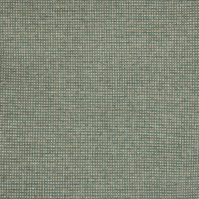B5342 Cactus Fabric: D52, MADE IN USA, CONTRACT FABRIC, MULTI COLORED TEXTURE, MULTI COLORED SOLID, MULTI COLORED PLAIN, NEUTRAL CONTRACT, GREEN CONTRACT, TWO TONE, GREEN AND TAN CONTRACT,WOVEN