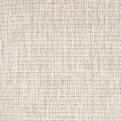 B5520 Parchment Fabric: E57, E14, D55, CRYPTON HOME, CRYPTON FINISH, PERFORMANCE FABRIC, PERFORMANCE FABRICS, STAIN RESISTANT, ANTI-MICROBIAL, EASY TO CLEAN, STAIN RESISTANCE, OFF WHITE CHENILLE, CREAMY WHITE CHENILLE, CREAM COLORED CHENILLE,WOVEN