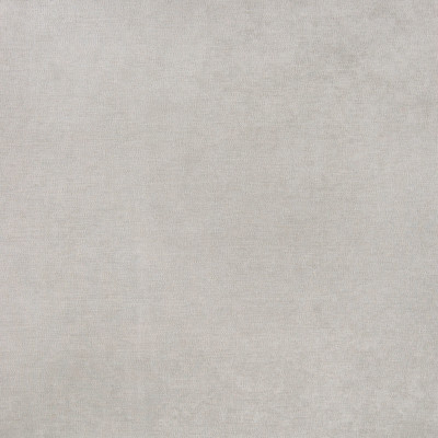 B5533 Sorrell Fabric: D55, CRYPTON HOME, CRYPTON FINISH, PERFORMANCE FABRIC, PERFORMANCE FABRICS, STAIN RESISTANT, ANTI-MICROBIAL, EASY TO CLEAN, STAIN RESISTANCE, GRAY VELVET, GREY VELVET, SOLID LIGHT GREY VELVET,WOVEN