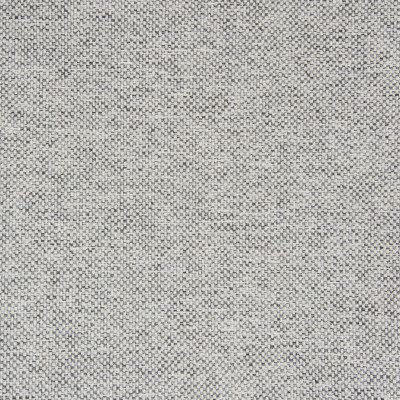 B5534 Glacier Fabric: D55, CRYPTON HOME, CRYPTON FINISH, PERFORMANCE FABRIC, PERFORMANCE FABRICS, STAIN RESISTANT, ANTI-MICROBIAL, EASY TO CLEAN, STAIN RESISTANCE, LIGHT GRAY WOVEN, LIGHT GREY WOVEN, CHARCOAL WOVEN