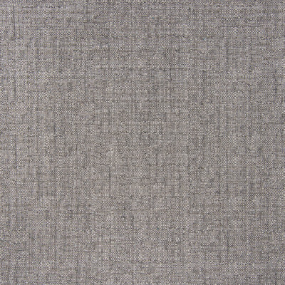 B5542 Slate Fabric: D55, CRYPTON HOME, CRYPTON FINISH, PERFORMANCE FABRIC, PERFORMANCE FABRICS, STAIN RESISTANT, ANTI-MICROBIAL, EASY TO CLEAN, STAIN RESISTANCE, LIGHT GRAY WOVEN, LIGHT GREY WOVEN, CHARCOAL WOVEN