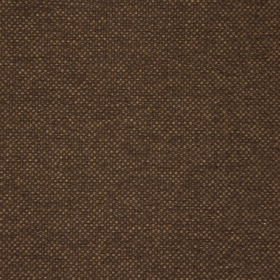 B5546 Cocoa Fabric: D55, CRYPTON HOME, CRYPTON FINISH, PERFORMANCE FABRIC, PERFORMANCE FABRICS, STAIN RESISTANT, ANTI-MICROBIAL, EASY TO CLEAN, STAIN RESISTANCE, LIGHT BROWN WOVEN, LIGHT BROWN TEXTURE, MEDIUM BROWN SOLID