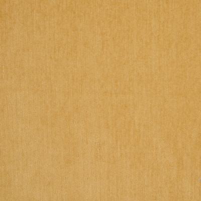 B5572 Cornsilk Fabric: D55, CRYPTON HOME, CRYPTON FINISH, PERFORMANCE FABRIC, PERFORMANCE FABRICS, STAIN RESISTANT, ANTI-MICROBIAL, EASY TO CLEAN, STAIN RESISTANCE, YELLOW CHENILLE, SOLID YELLOW