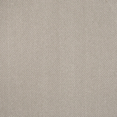 B5633 Zinc Fabric: S49, D56, CRYPTON, CRYPTON FINISH, CRYPTON HOME, EASY TO CLEAN, PERFORMANCE, ANTIMICROBIAL, STAIN RESISTANT, STAIN RESISTANCE, GRAY HERRINGBONE, GREY GEOMETRIC, GREY TEXTURE, MOUSE, GRAY, GREY, LIGHT GRAY, ZINC, WOVEN, MADE IN USA