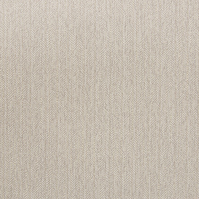 B5636 Nickel Fabric: D56, CRYPTON, CRYPTON FINISH, CRYPTON HOME, EASY TO CLEAN, PERFORMANCE, ANTIMICROBIAL, STAIN RESISTANT, STAIN RESISTANCE, GRAY HERRINGBONE, GREY GEOMETRIC, GREY TEXTURE, MOUSE, LIGHT GREY, ZINC, WOVEN