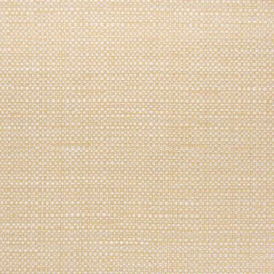 B5658 Sunshine Fabric: D56, CRYPTON, CRYPTON FINISH, CRYPTON HOME, EASY TO CLEAN, PERFORMANCE, ANTI-MICROBIAL, STAIN RESISTANT, STAIN RESISTANCE, YELLOW WOVEN, SOLID YELLOW, GOLDEN YELLOW TEXTURE