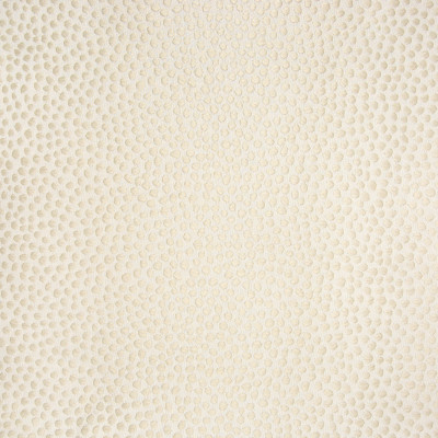 B6018 Ecru Fabric: D62, LIGHT KHAKI MATELASSES, VANILLA DOT MATELASSES, SKIN, ANIMAL SKIN MATELASSES,WOVEN