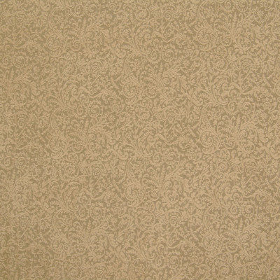 B6426 Almond Fabric: D68, SMALL SCALE FLORAL CHENILLE, SMALL SCALE SCROLL, SMALL SCALE CHENILLE, CHUNKY CHENILLE