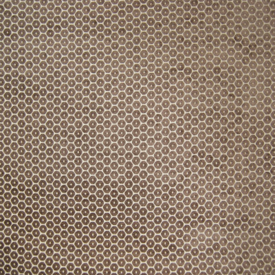 B6438 Sepia Fabric: D68, MOCHA DOT, LATTE DOT, CHOCOLATE DOT, MILK CHOCOLATE DOT VELVET