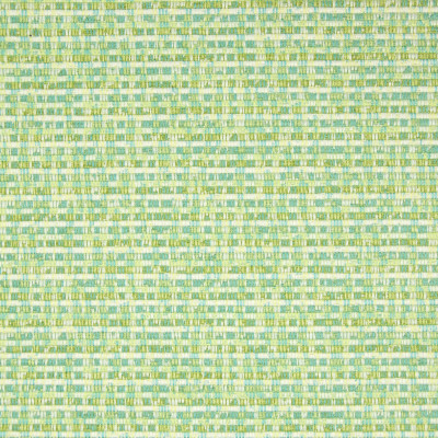 B6721 Citrus Fabric: E38, D88,D84, D74, ESSENTIALS, ESSENTIAL FABRIC, GREEN WOVEN, SOLID GREEN, MULTICOLORED GREEN, GLOBAL TEXTURE, GLOBAL WOVEN, CITRUS GREEN, CITRUS WOVEN