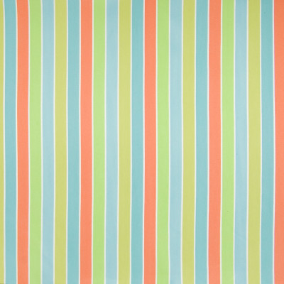 "B6861 Citrus Fabric: D79, OUTDOOR, OUTDOOR STRIPE, MULTICOLOR STRIPE, 1"" STRIPE, WOVEN STRIPE"