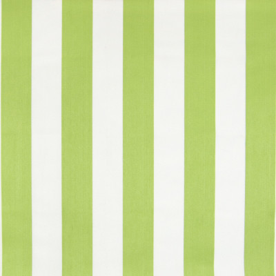 B6879 Lime Fabric: D79, OUTDOOR, LIME STRIPE, POLO STRIPE, CABANA STRIPE, BOLD STRIPE, BRIGHT GREEN STRIPE, WIDE STRIPE