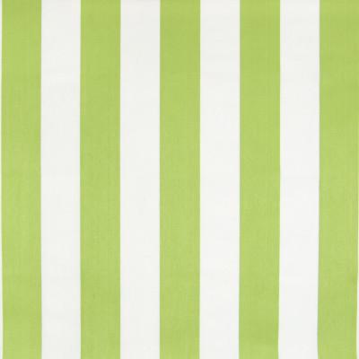 B6879 Lime Fabric: D79, OUTDOOR, LIME STRIPE, POLO STRIPE, CABANA STRIPE, BOLD STRIPE, BRIGHT GREEN STRIPE, WIDE STRIPE,WOVEN