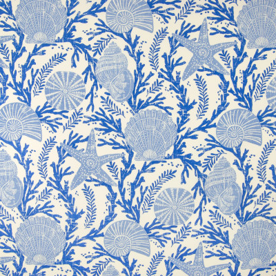 B6927 Sapphire Fabric: D80, OUTDOOR, NOVELTY PRINT, BEACH PRINT, SEASHELLS, INDIGO, NAVY, NAUTICAL