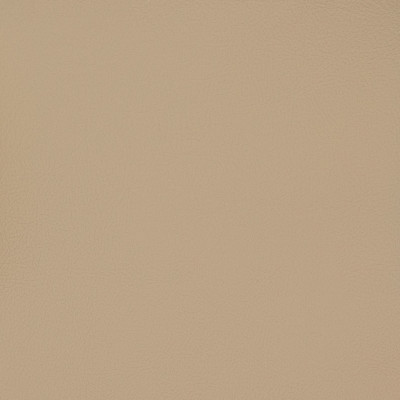 B6993 Taupe Fabric: E12, MGX, MORGUARD, CONTRACT, HOSPITALITY, RESIDENTIAL, FMVSS, CONTRACT VINYL, OFFICE VINYL, RESTAURANT VINYL, HOSPITALITY VINYL, AUTOMOTIVE, AUTO, CARS, RV, COMMERCIAL VINYL, EASY TO CLEAN FINISH APPLIED, PROTECTED FINISH VINYL