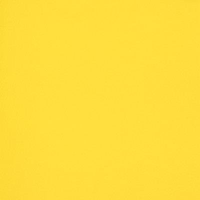 B6998 Yellow Fabric: E11, MGX, MORGUARD, CONTRACT, HOSPITALITY, RESIDENTIAL, FMVSS, CONTRACT VINYL, OFFICE VINYL, RESTAURANT VINYL, HOSPITALITY VINYL, AUTOMOTIVE, AUTO, CARS, RV, COMMERCIAL VINYL, EASY TO CLEAN FINISH APPLIED, PROTECTED FINISH VINYL