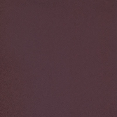 B7003 Vineyard Fabric: MGX, MORGUARD, CONTRACT, HOSPITALITY, RESIDENTIAL, FMVSS, CONTRACT VINYL, OFFICE VINYL, RESTAURANT VINYL, HOSPITALITY VINYL, AUTOMOTIVE, AUTO, CARS, RV, COMMERCIAL VINYL, EASY TO CLEAN FINISH APPLIED, PROTECTED FINISH VINYL