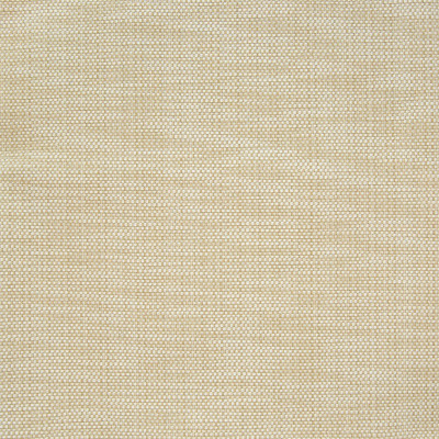 B7316 Raffia Fabric: S12, D89, WOVEN TEXTURE, SOLID WOVEN, BEIGE, GOLDEN, SANDY HUES, WHEAT