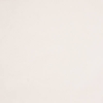 B7427 Eggshell Fabric: E30, D93, OFF WHITE SOLID, IVORY SOLID, SOFT EGGSHELL, VANILLA SOLID, WOVEN