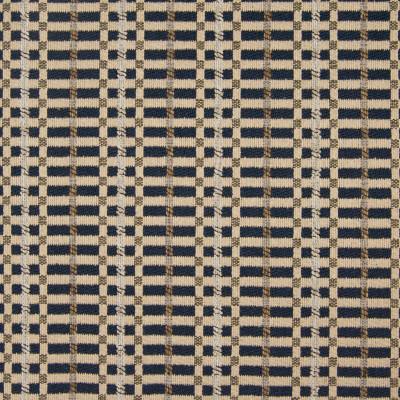 B7908 Blueberry Fabric: E02, BLUE CHECK, MULTICOLORED CHECK, WOVEN CHECK, INDIGO CHECK, PERFORMANCE FABRICS, REVOLUTION PERFORMANCE FABRICS, REVOLUTION FABRICS, BLEACH CLEANABLE, STAIN RESISTANT,LATTICE