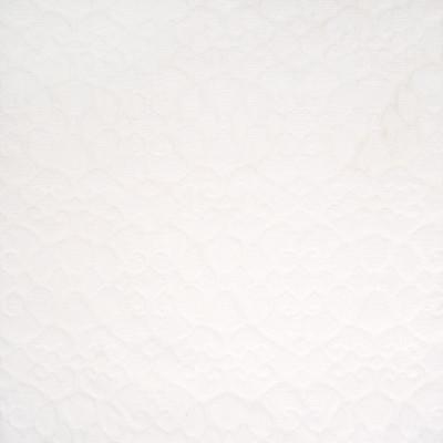 B8116 Salt Fabric: E06, WHITE, TEXTURE, MATELASSES, SCROLL