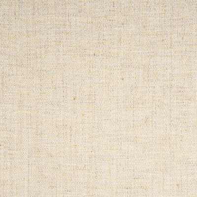 B8146 Gold Dust Fabric: E06, METALLIC, GOLD, TINSEL, WOVEN, SOLID