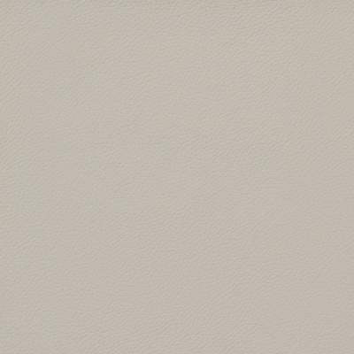 B8370 Light Grey Fabric: E11, SOLID VINYL, VINYL, CONTRACT VINYL, COMMERCIAL VINYL, HEAVY DUTY VINYL, MEDIUM GRAY VINYL, LIGHT GRAY VINYL, MEDIUM GREY VINYL, STONE, AUTOMOTIVE, HEALTHCARE VINYL, HOSPITALITY, CORPORATE VINYL, OFFICE VINYL